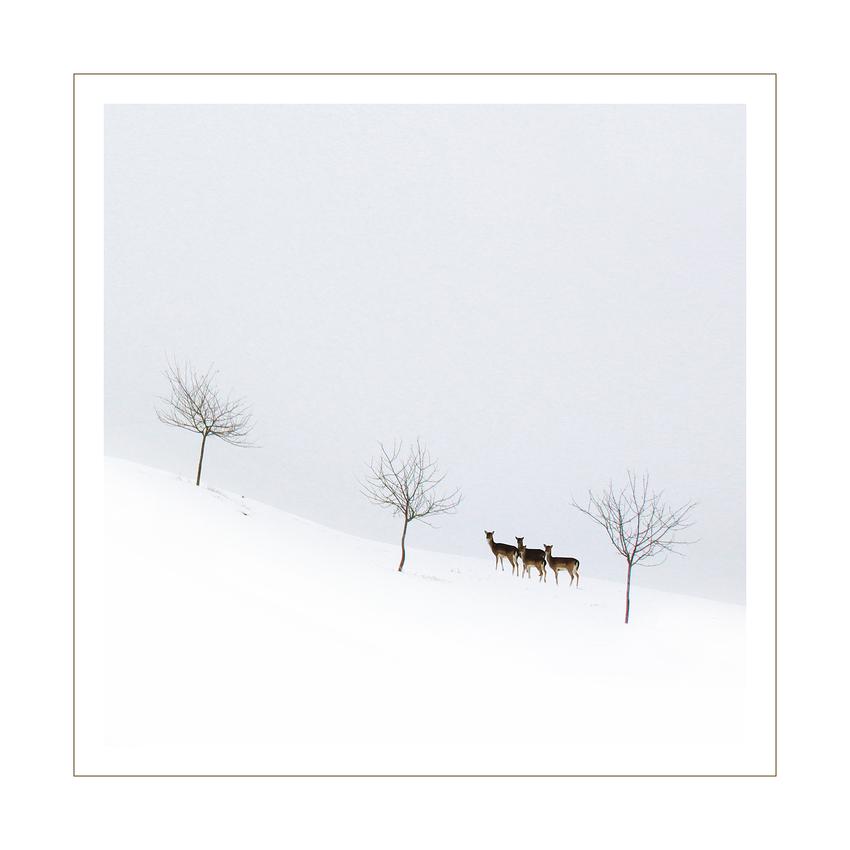 Schnee anno dazumal