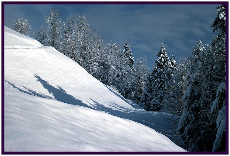 Schnee bis in die Niederungen (2)