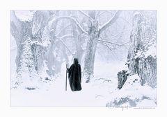 Schnee des Nordens