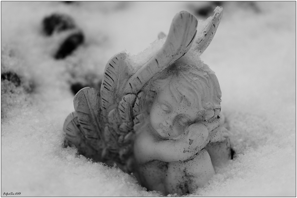 * Schnee-Engel *