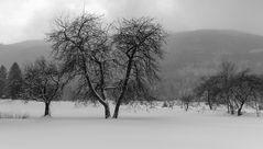 Schnee ....