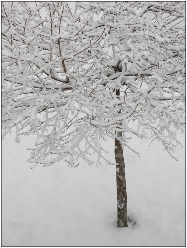 Schnee gratis abzugeben