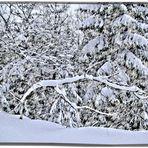 ......Schnee HDR...