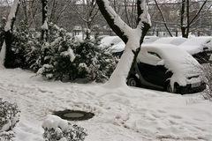 Schnee im neuen Jahr