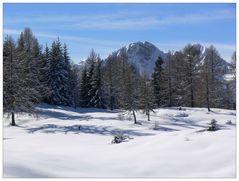 Schnee im Winter 2007