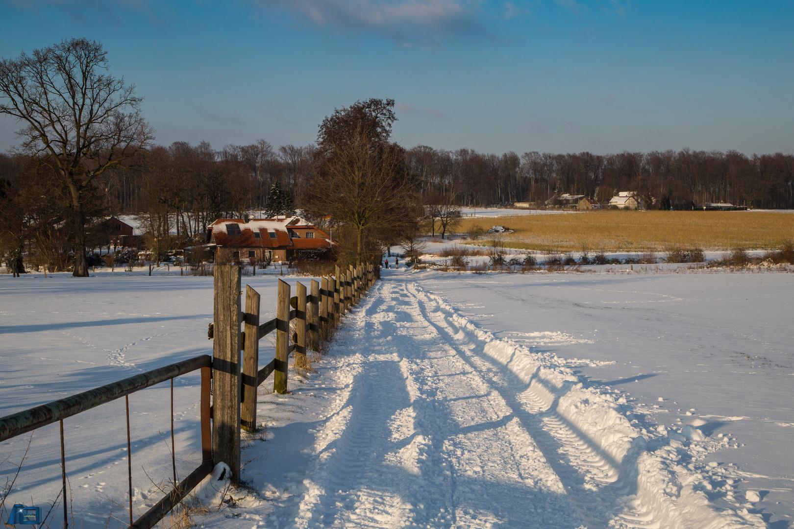 Schnee in der Ried