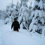 Schnee in Hülle und Fülle...