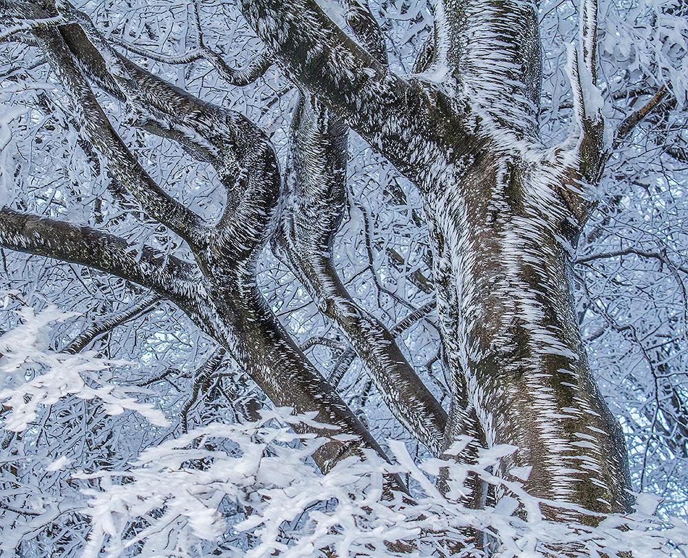Schnee-Kalligraphie