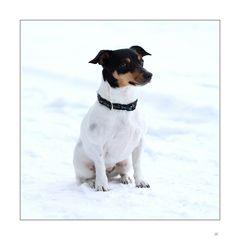 Schnee-Russel