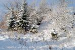 Schnee satt...