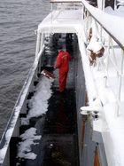 Schnee schippen ist angesagt