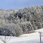 Schnee, Schnee, Schnee ...