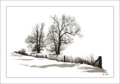 Schnee, Schnee, Schnee,...