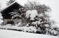 Schnee Schnee und mehr Schnee