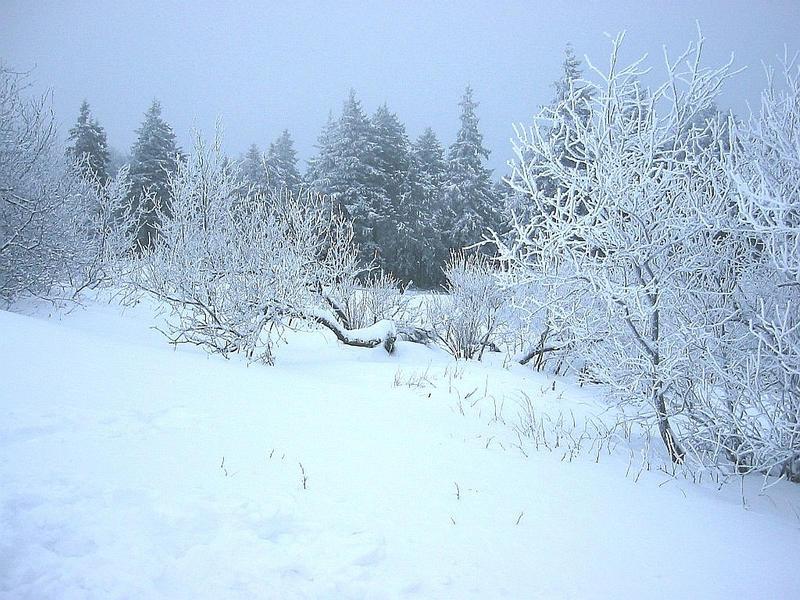 Schnee, Schnee und nochmals...