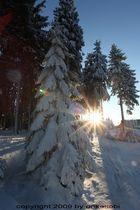 Schnee Test 2
