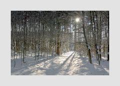 Schnee . . . . überall Schnee