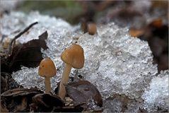 Schnee und Eis....
