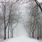 Schnee und Nebel im Teuto