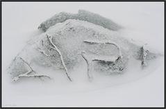 Schnee- und sturmgepeitscht