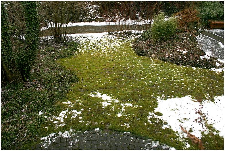 Schnee verliert gegen Regen