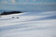 Schnee-wanderer