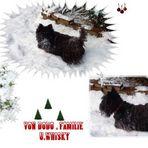 Schnee-Weihnachtsgrüsse ..............