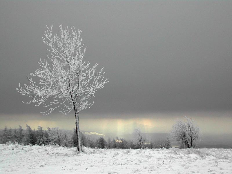 Schnee-weiß vor Himmel-grau