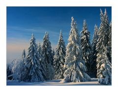 Schnee-Winter-Paradies am Sonnenberg... -