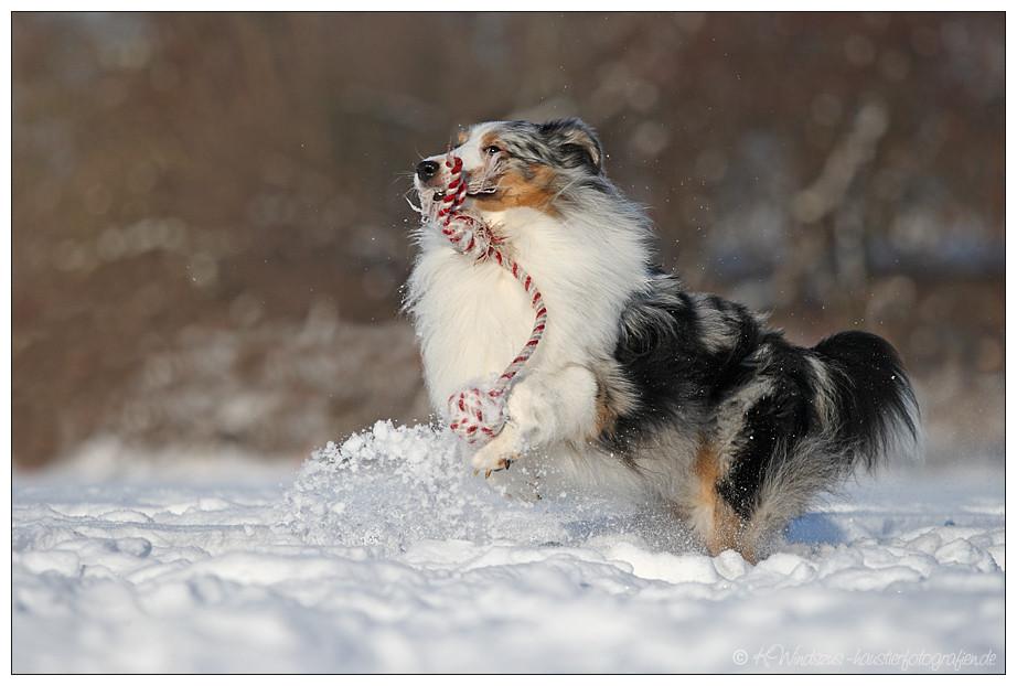 ... Schneeauflockerungsanlage ...