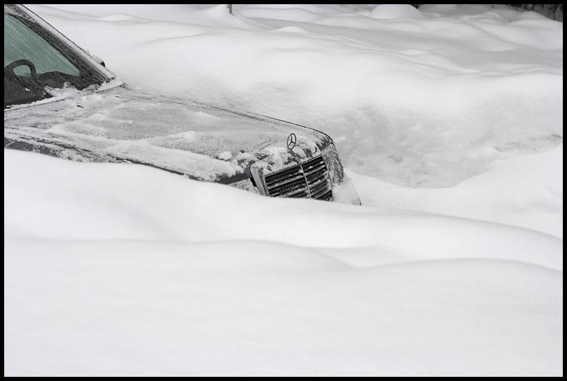Schneebonze