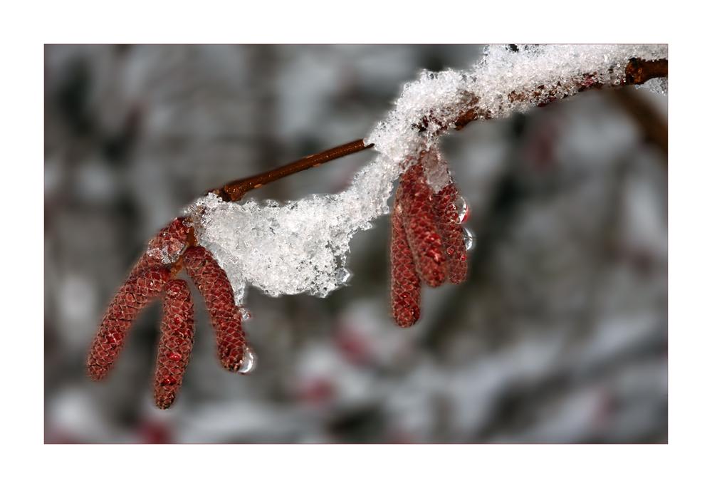 Schneebrücke