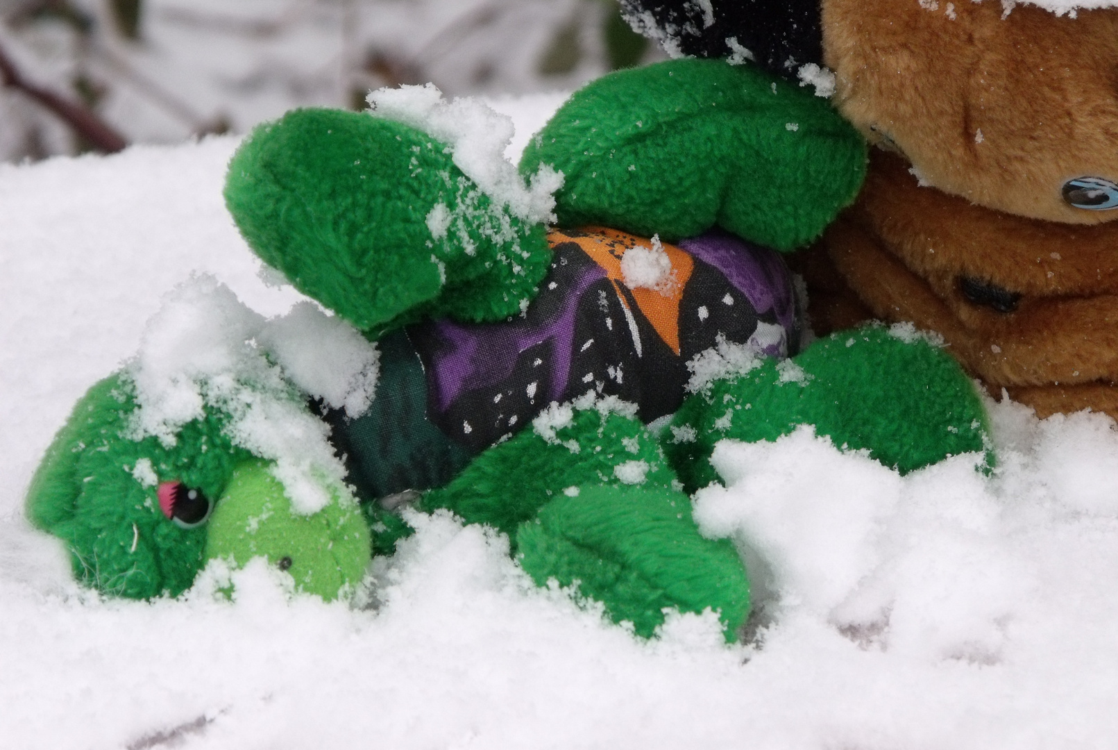 Schneechaos mit Kuscheltieren