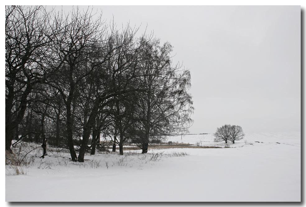 schneedecktes