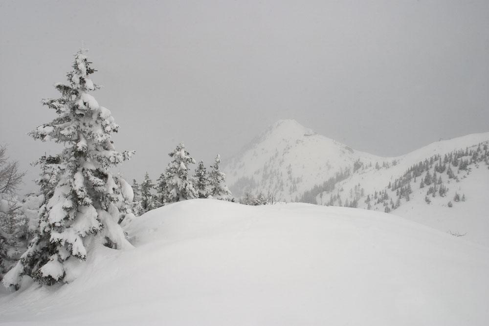 Schneeeinsamkeit