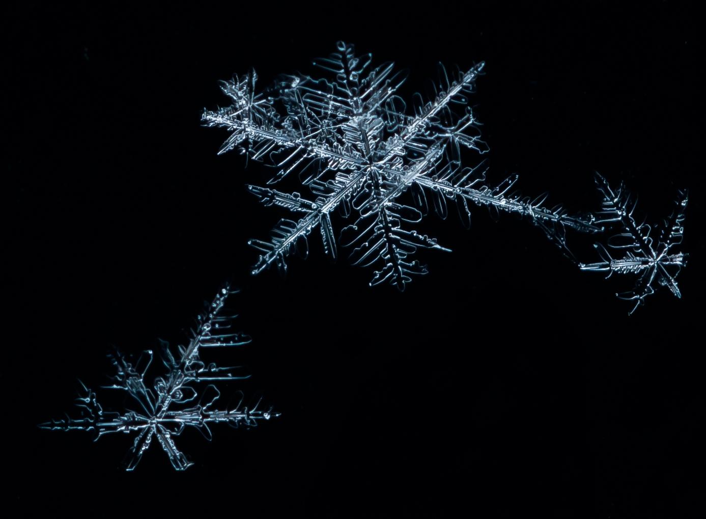 Schneeflocken Makro
