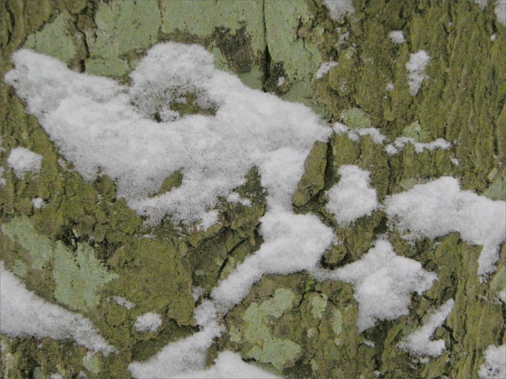 Schneeflockenfigur