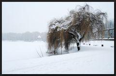 ...SchneeFlöckchen...WeißRöckchen...