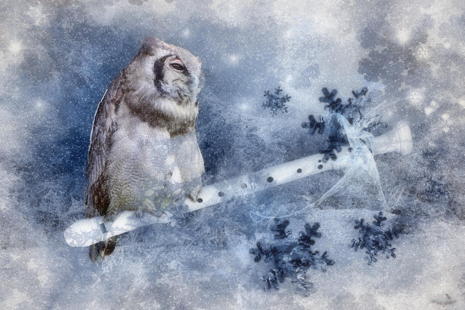 Schneeflötchen