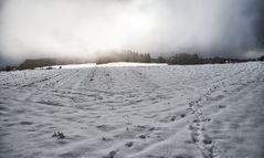 Schneefront