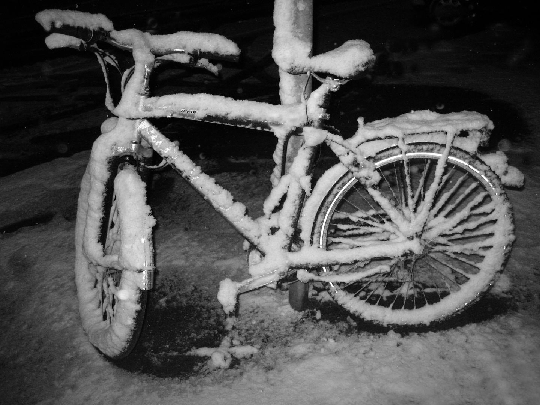 Schneegefährt