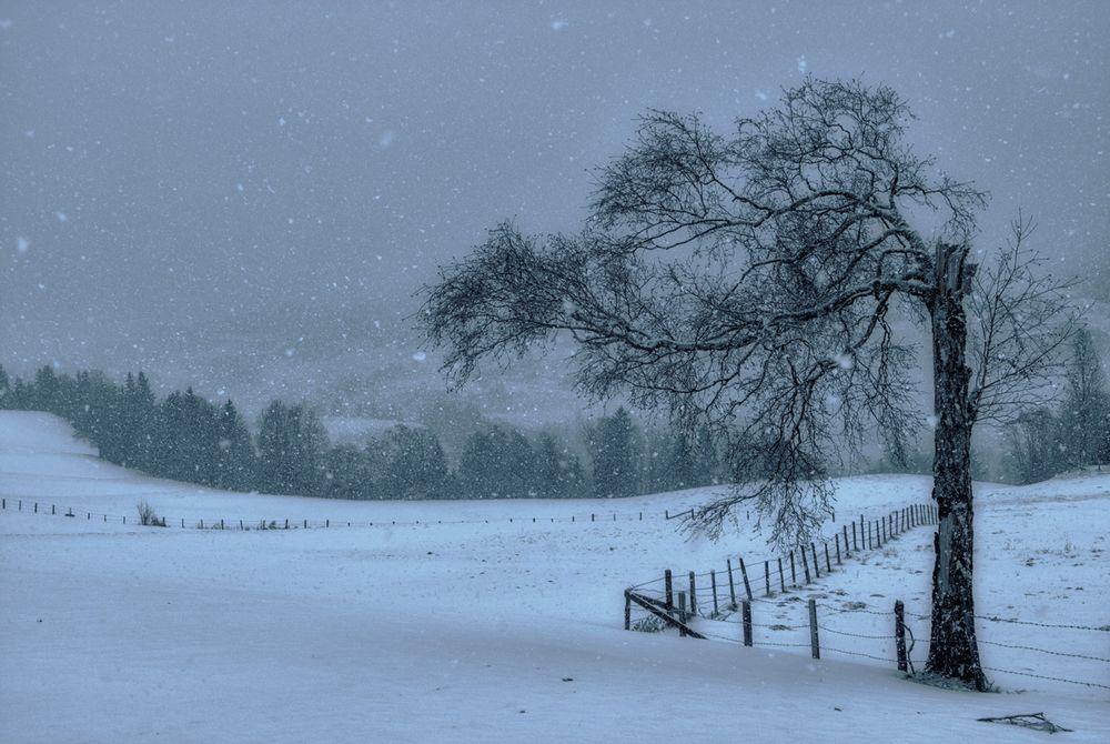 Schneegestöber zum Jahresbeginn