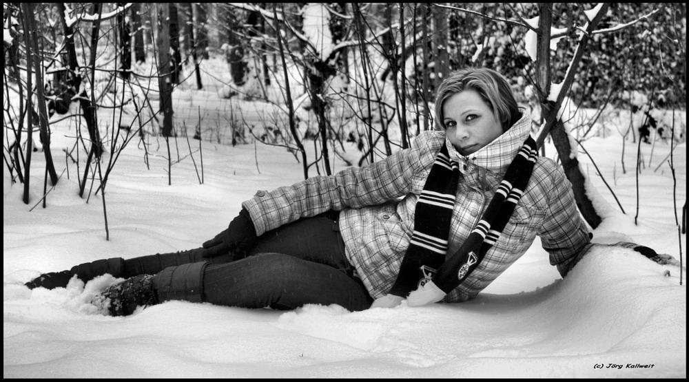 SchneeHase-Timidus