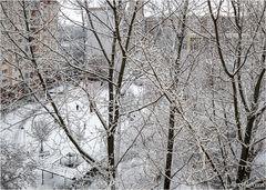 Schneehof