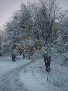 Schneekleid, Stockholm, Schweden