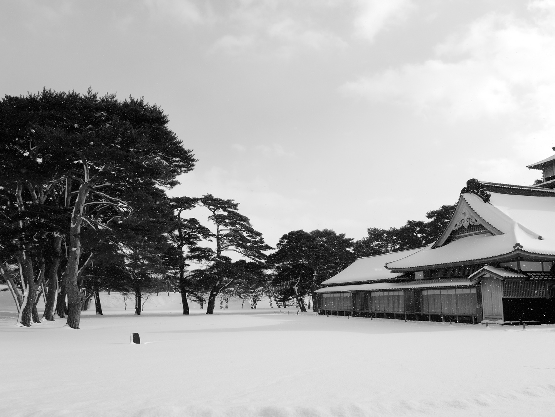 Schneelandschaft 2