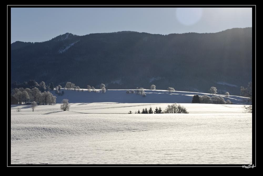 [ Schneelandschaft. ]