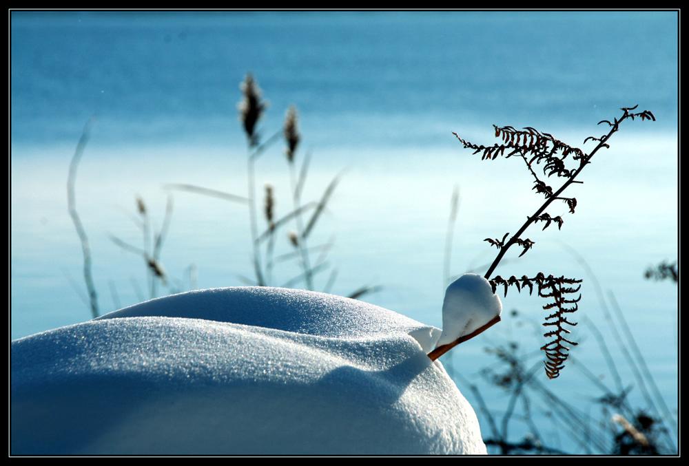Schneelandschaft an der Flensburger Förde