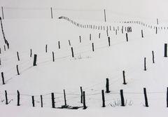 Schneelandschaft (SW Analog Foto)