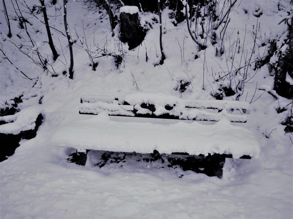 Schneerast